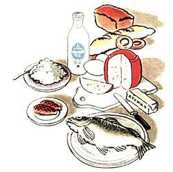 Белки - Составные части пищи