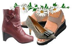 Стопа и обувь