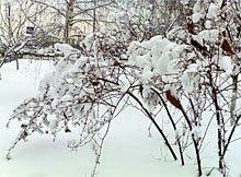 Можно ли зимой пользоваться увлажняющим кремом