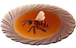 Мед в пищевом рационе ребенка