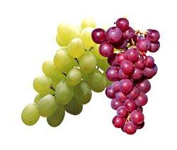 Виноград — ценнейший диетический продукт