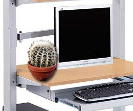 Кактус возле компьютера