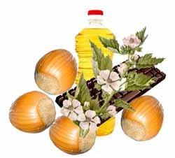 Масло для сухих волос из алтея и орехов