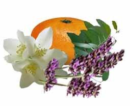 Целебный аромат. Ароматы могут исцелять и ободрять