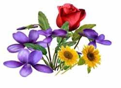Характер - по цветам
