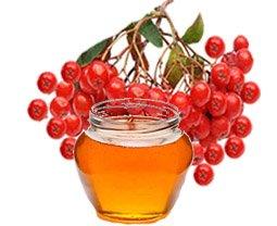 Геморрой. Лечение ягодами рябины