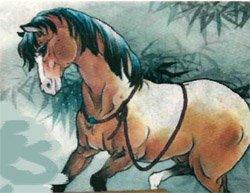 Гороскоп на 2013 год  Лошадь