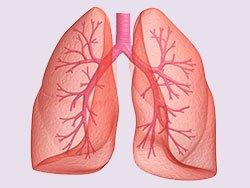 Легочная (дыхательная) недостаточность - Болезни человека